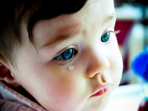 baby-tears-wallpape.jpg